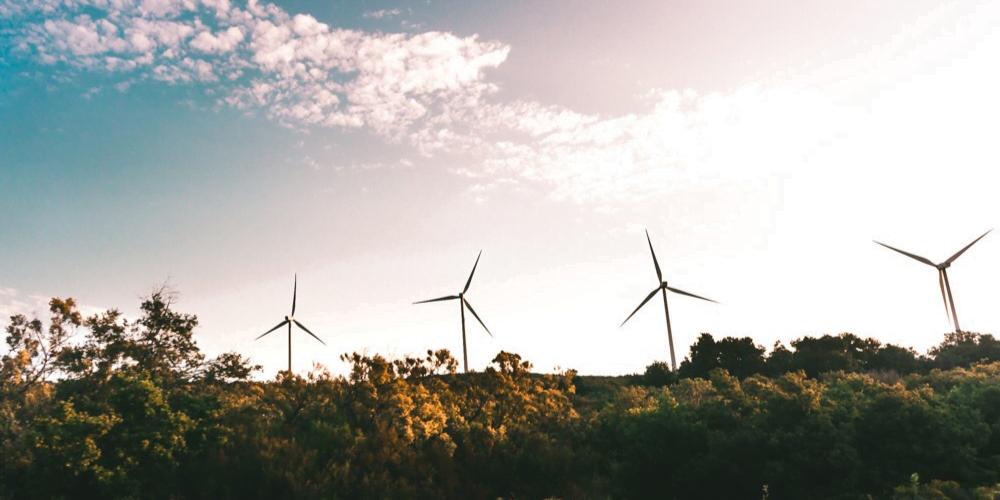 RFS Blog - ESG vs. Impact Investing